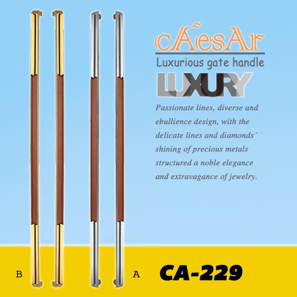 CA-229