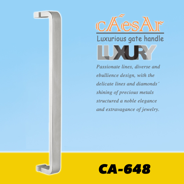 Bathroom door handles CA-648
